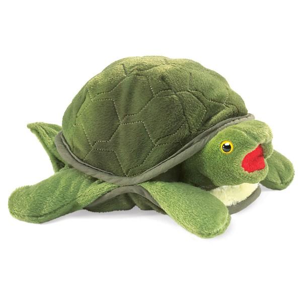 Kleine Schildkröte / Baby Turtle
