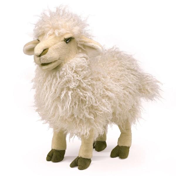 Schaf, langes Fell / Longwool Sheep