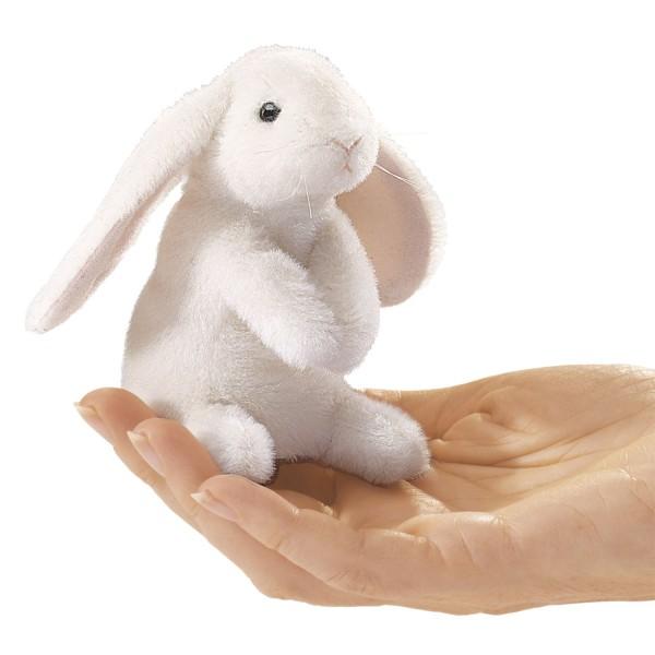 Mini Hängeohrhase / Mini Lop Ear Rabbit