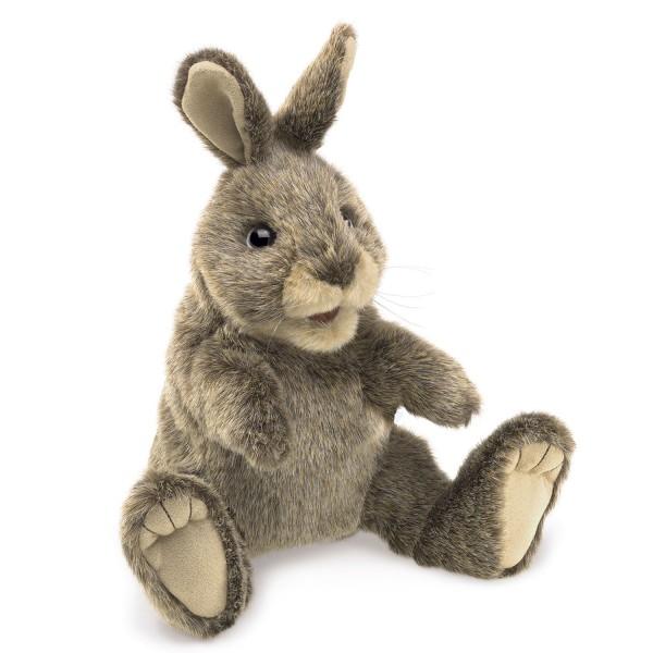 Kleines Baumwollschwanzkaninchen / Small Cottontail Rabbit