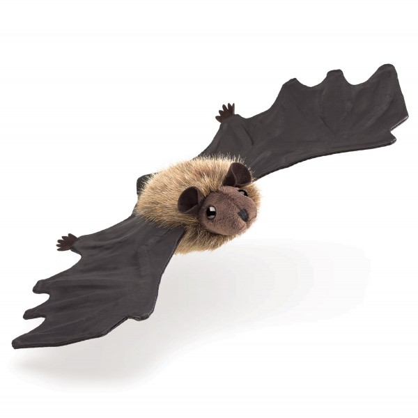 Kleine Fledermaus / Little Brown Bat