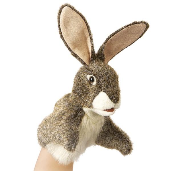 Kleiner Hase / Little Hare