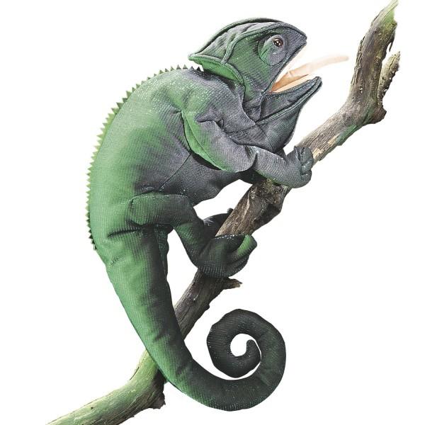 Chamäleon / Chameleon