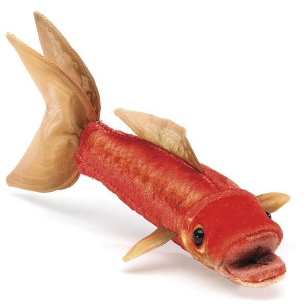 Mini Goldfisch / Mini Goldfish