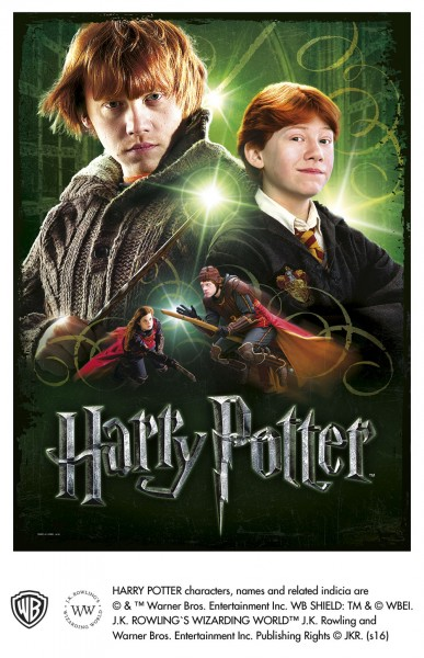 Wrebbit 3D Harry Potter Poster Puzzle RON WEASLY 500