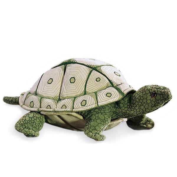 Landschildkröte (helles Muster) / Tortoise