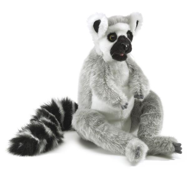 Katta / Ring-tailed Lemur