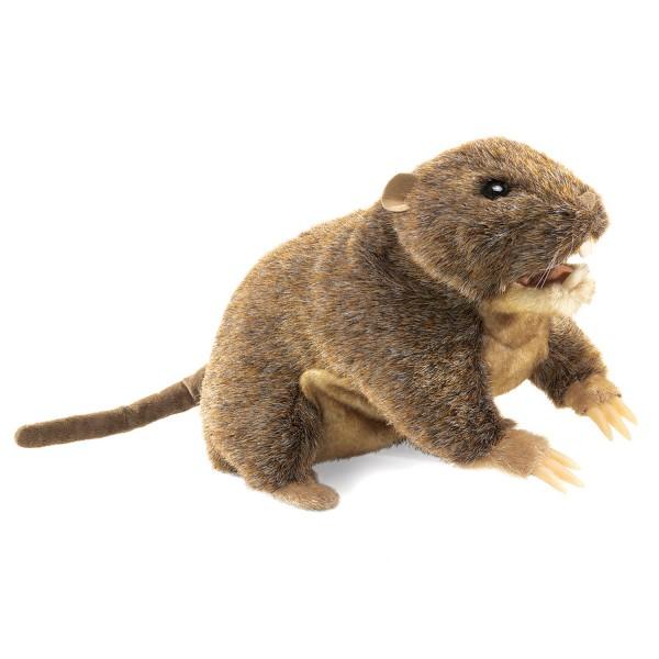 Erdhörnchen / Gopher