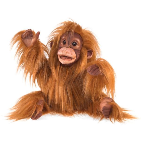 Baby Orang-Utan / Baby Orangutan