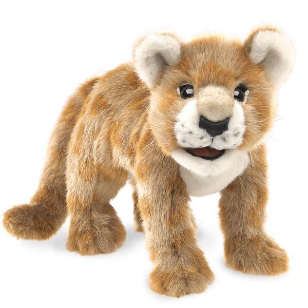 Löwenbaby / African Lion Cub