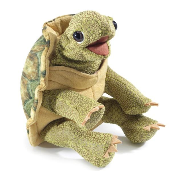 stehende Schildkröte / Standing Tortoise