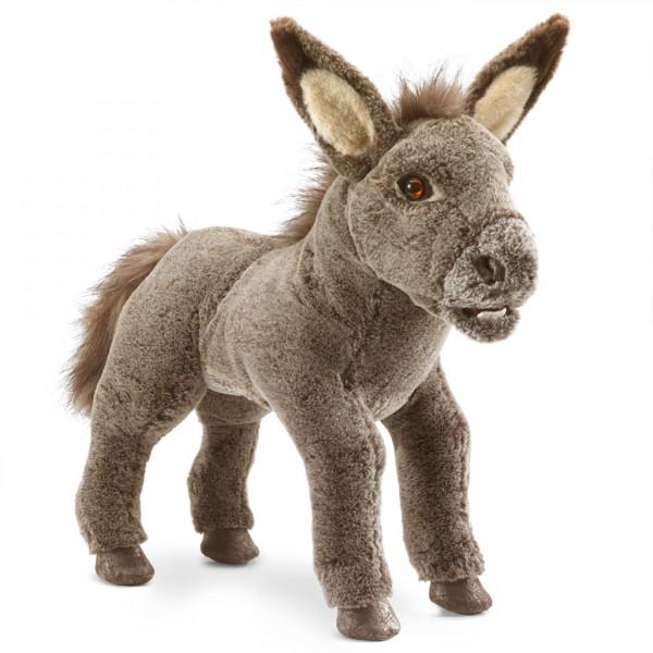 Eselchen / Baby Donkey
