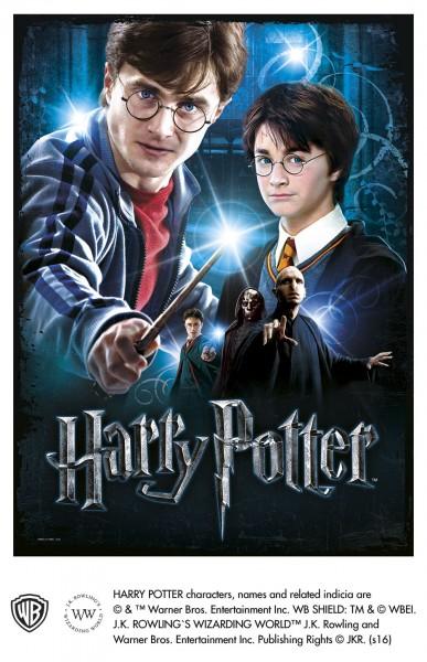 Wrebbit 3D Harry Potter Poster Puzzle HARRY POTTER 500
