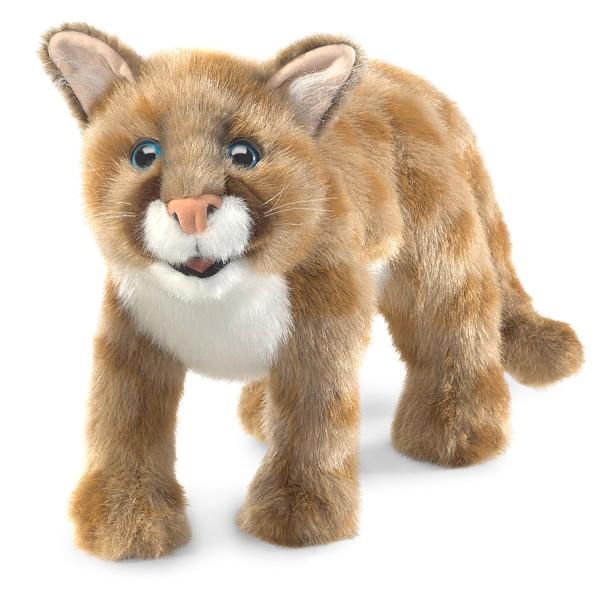 Pumajunges / Mountain Lion Cub