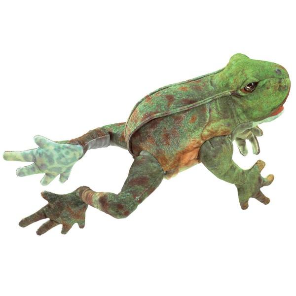 Hüpfender Frosch / Jumping Frog