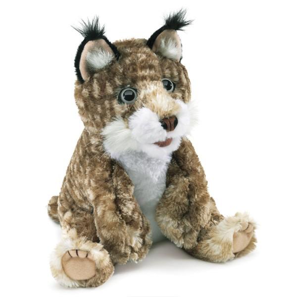 Luchsbaby / Bobcat Kitten