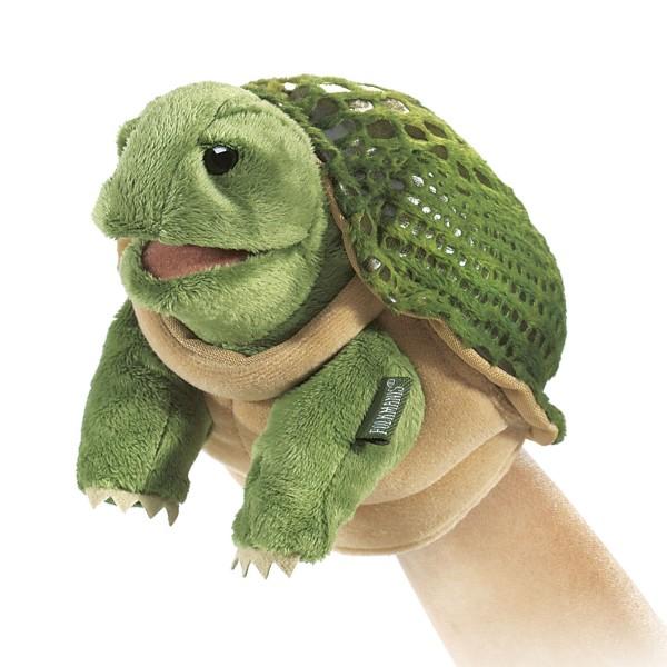 Kleine Schildkröte / Little Turtle