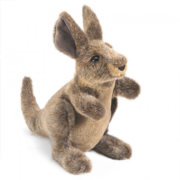 Junges Känguru / Small Kangaroo