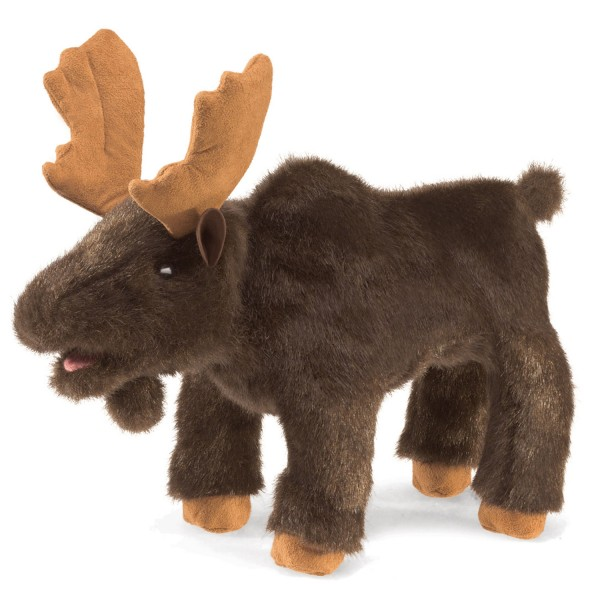 Kleiner Elch / Small Moose