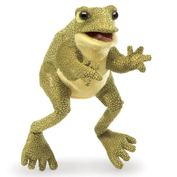 Lustiger Frosch / Funny Frog