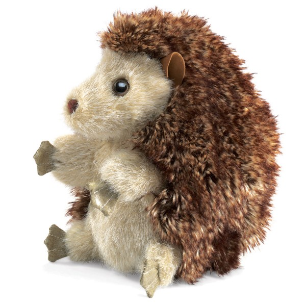 Igel / Hedgehog