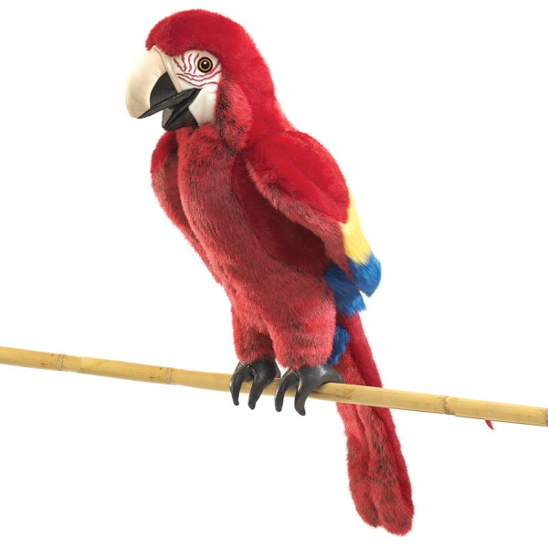 Ara / Scarlet Macaw