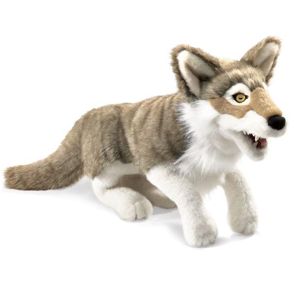 Grauwolf / Wolf, Grey