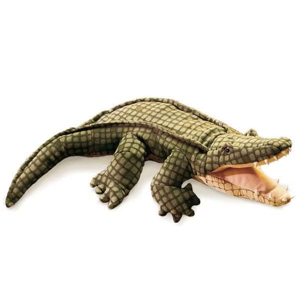 Alligator / Alligator