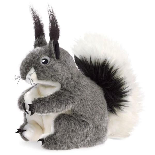 Abert Eichhörnchen / Abert Squirrel