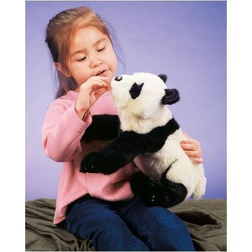 Kleiner Panda / Small Panda