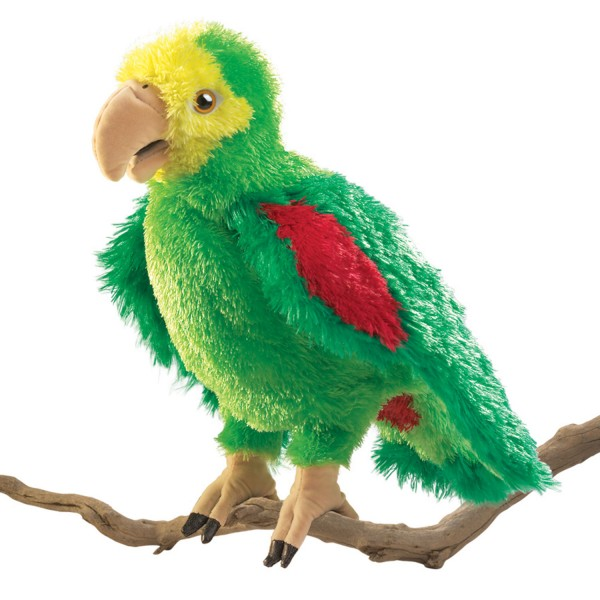 Amazonen-Papagei / Amazon Parrot