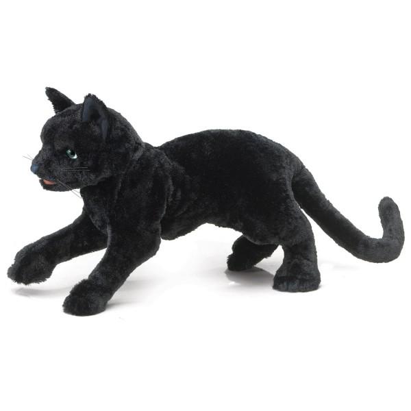 Schwarze Katze / Black Cat
