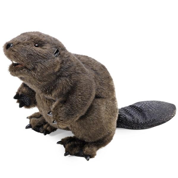 Biber / Beaver