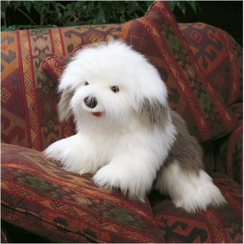 Bobtail-Hund / Sheepdog